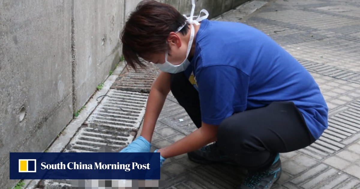 Two men who grilled over 30 pets who were thrown out of the Hong Kong building did not throw themselves up to police, a Justice Department official revealed