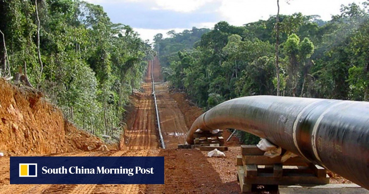 China-supported projects in Africa targeted by environmental groups